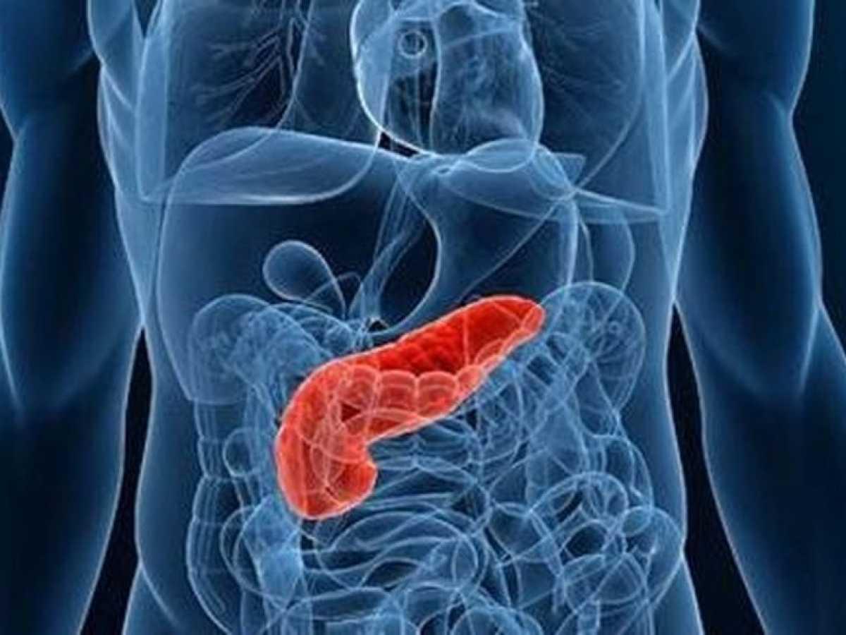 sistema de páncreas artificial para pacientes con diabetes